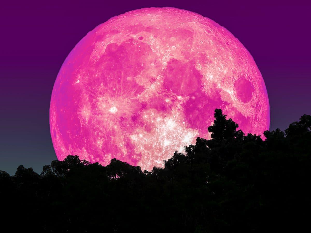 Hellster Supermond des Jahres: Pinker Vollmond im April