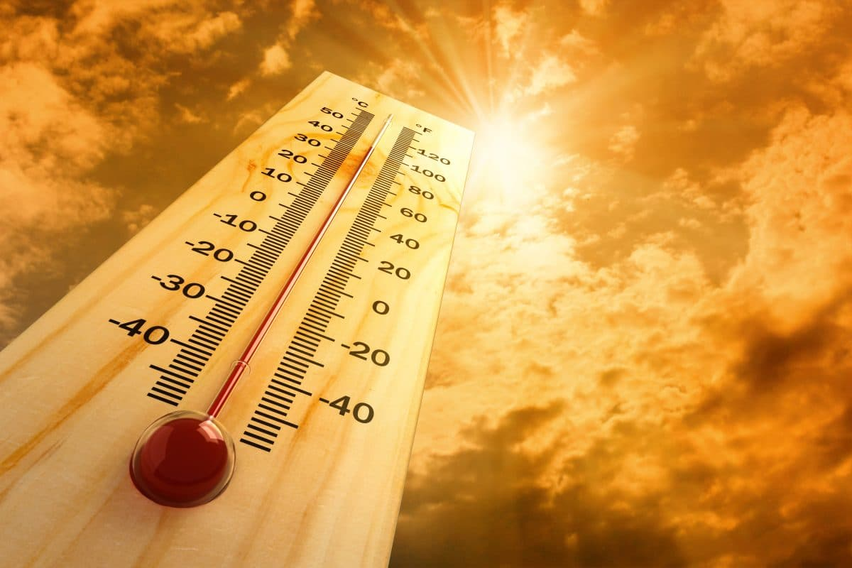 Im Sommer soll es sehr heiß werden: Warnung vor Rekord-Hitzesommer 2020