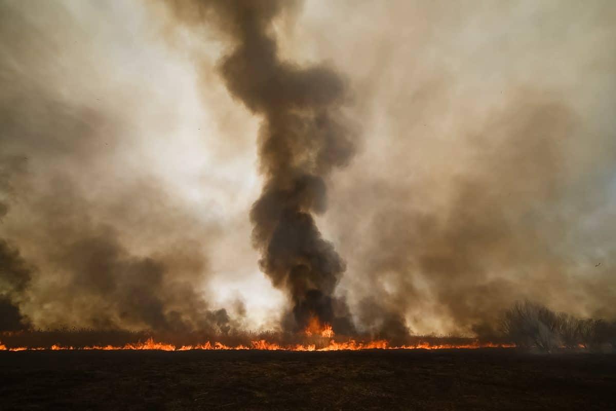 Zombie-Brände in der Arktis: Der Klimawandel ist am Polarkreis angekommen