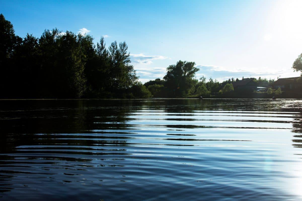 Babyleiche in Teich in Oberösterreich entdeckt