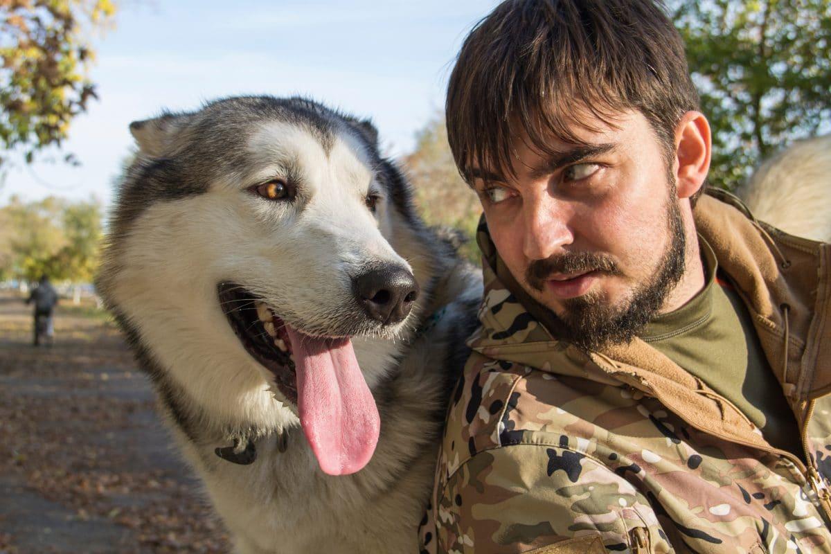 Hunde haben laut Studie einen Beschützerinstinkt und sorgen sich um ihren Besitzer