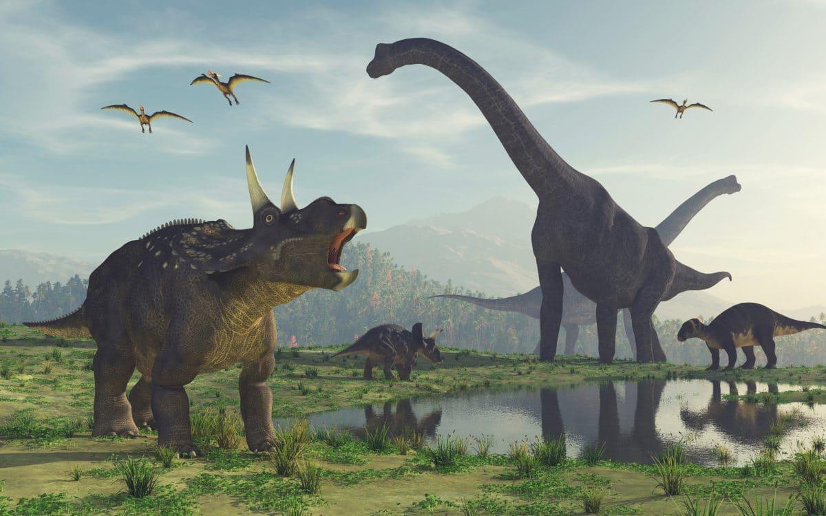 Kurioser Captain-Hook-Dinosaurier mit kleinen Klauen-Ärmchen entdeckt