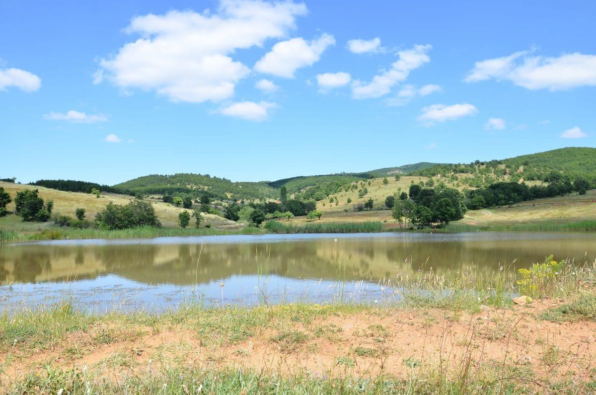 Klimawandel: Hitzesommer als Normalität und keine Fische mehr in den Gewässern?