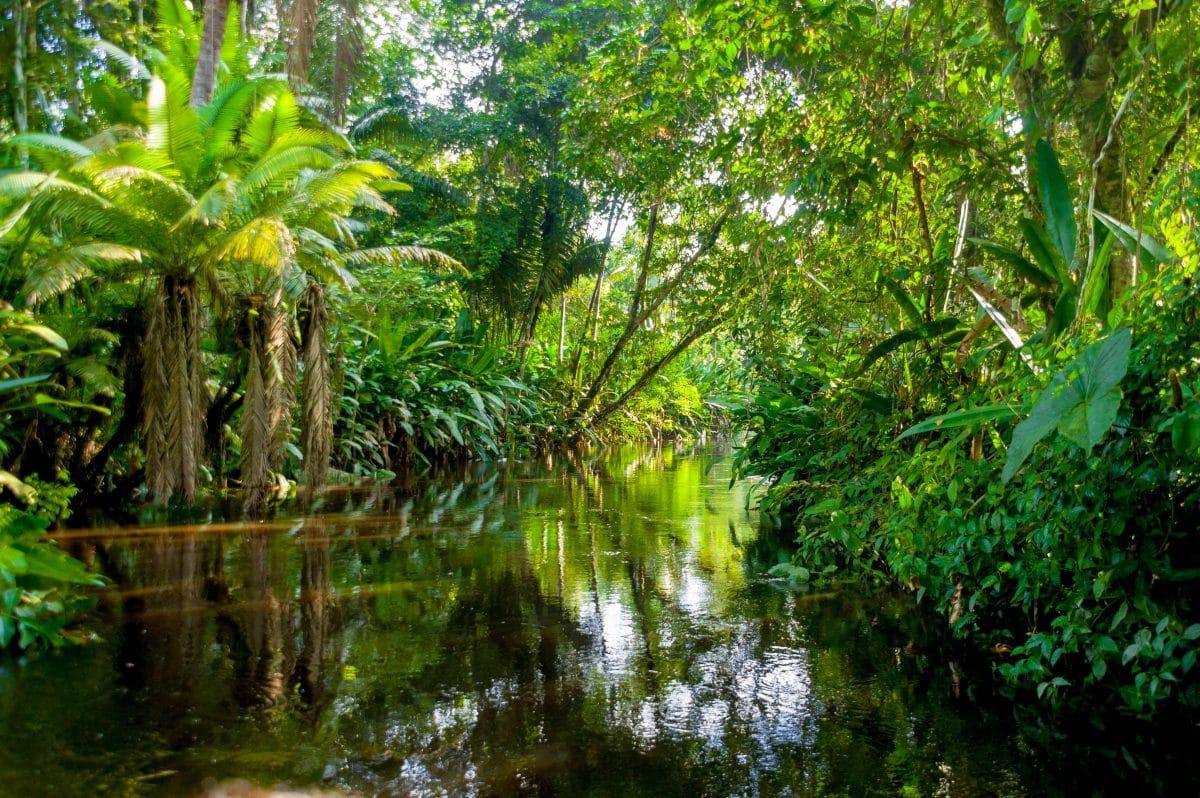 Krankenhausschiff im Amazonasgebiet hilft indigener Bevölkerung während Corona