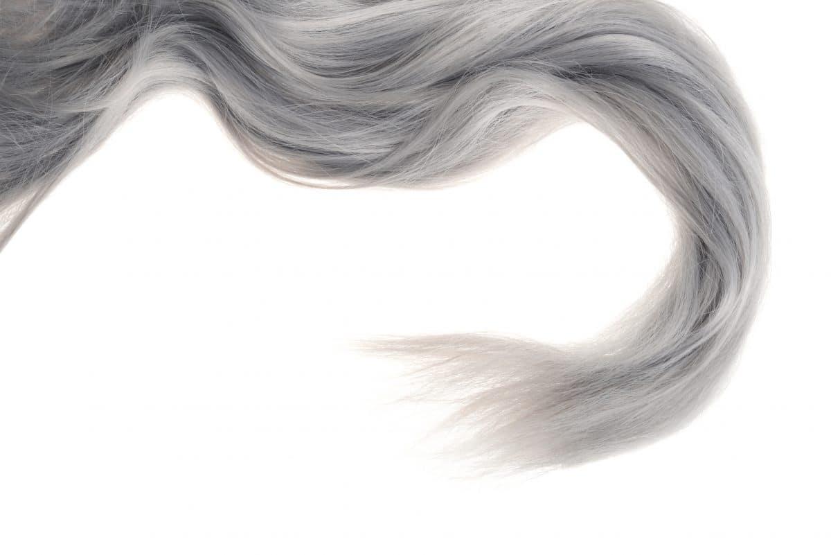 Diese 5 Lebensmittel beugen grauen Haaren vor
