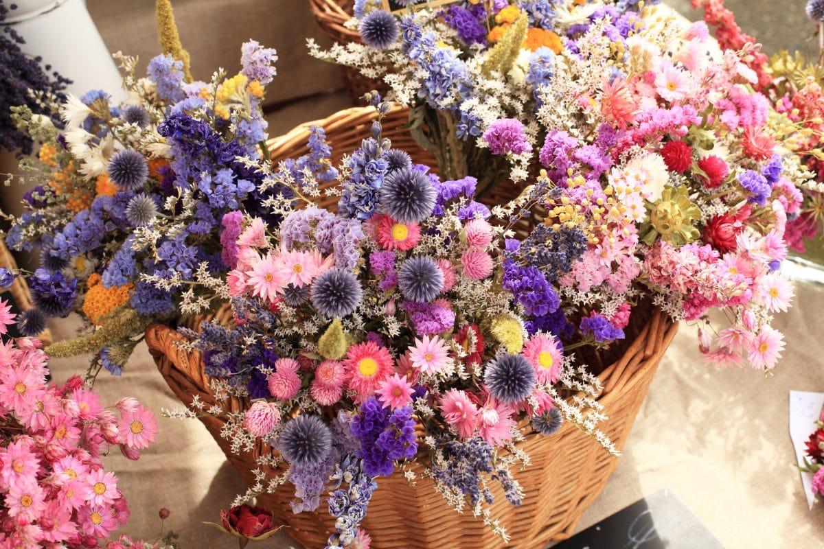 Dried-Flowers sind DER Deko-Trend im Sommer 2020