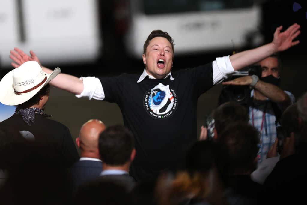 """Elon Musk präsentiert """"Cyborg-Schwein"""" Gertrude"""