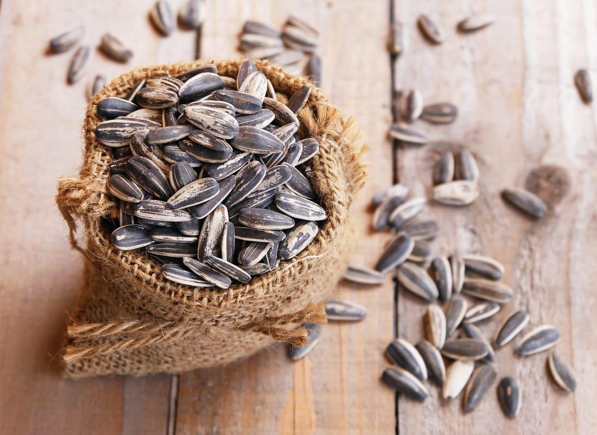 USA rätselt über mysteriöse Samen aus China