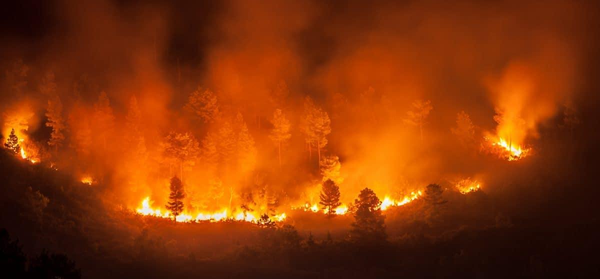 Brasilien ruft Notstand wegen katastrophaler Brände aus