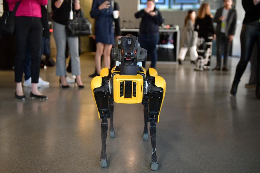 Roboterhund soll Corona-Patienten untersuchen