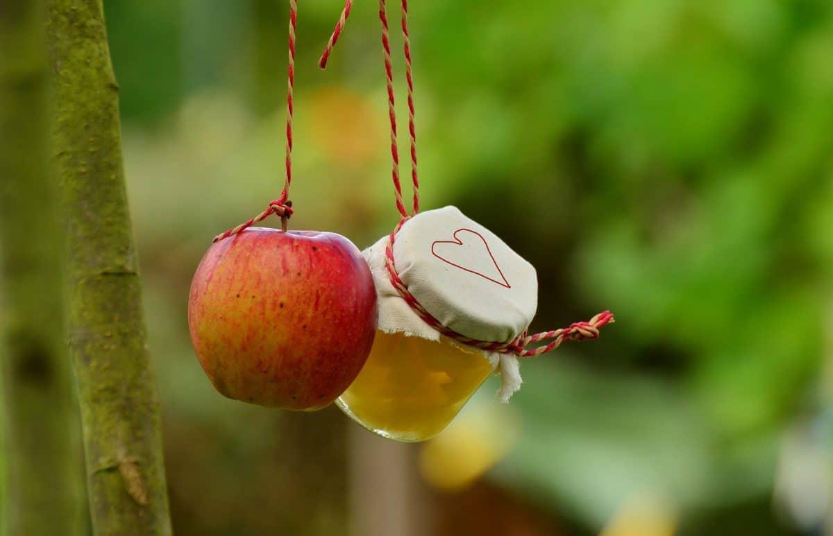 Apfelkompott selbermachen Rezept