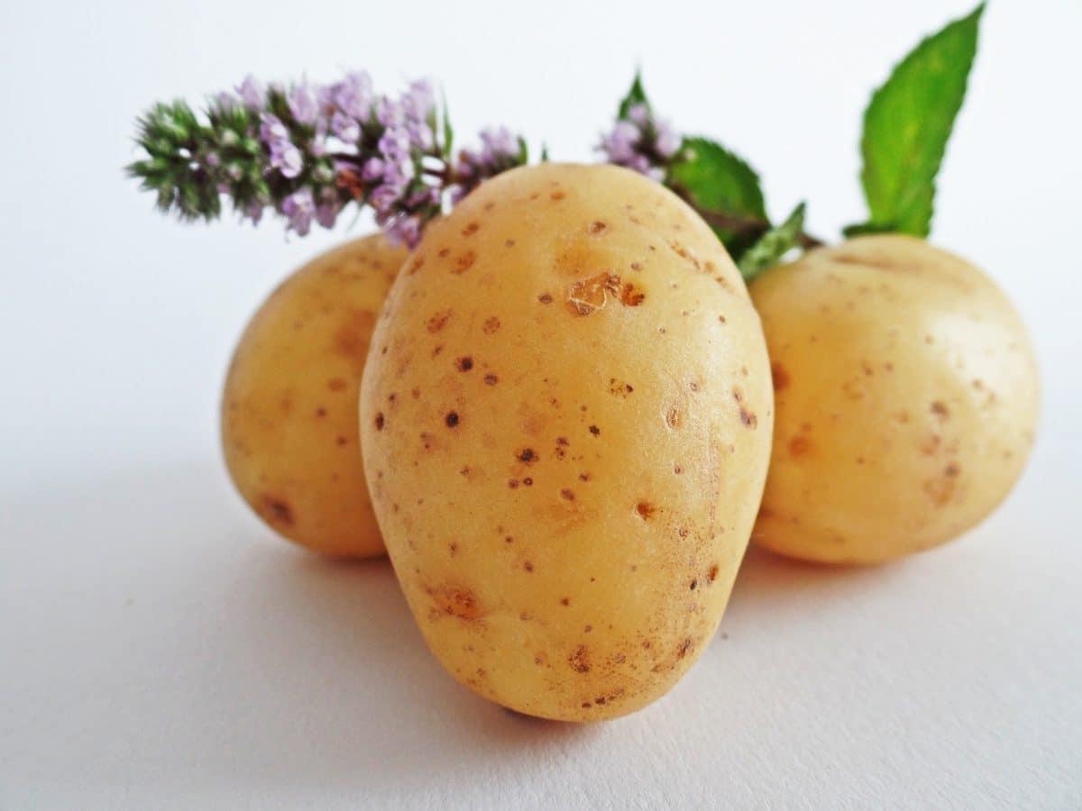 Eingebrannte Erdäpfel Rezept