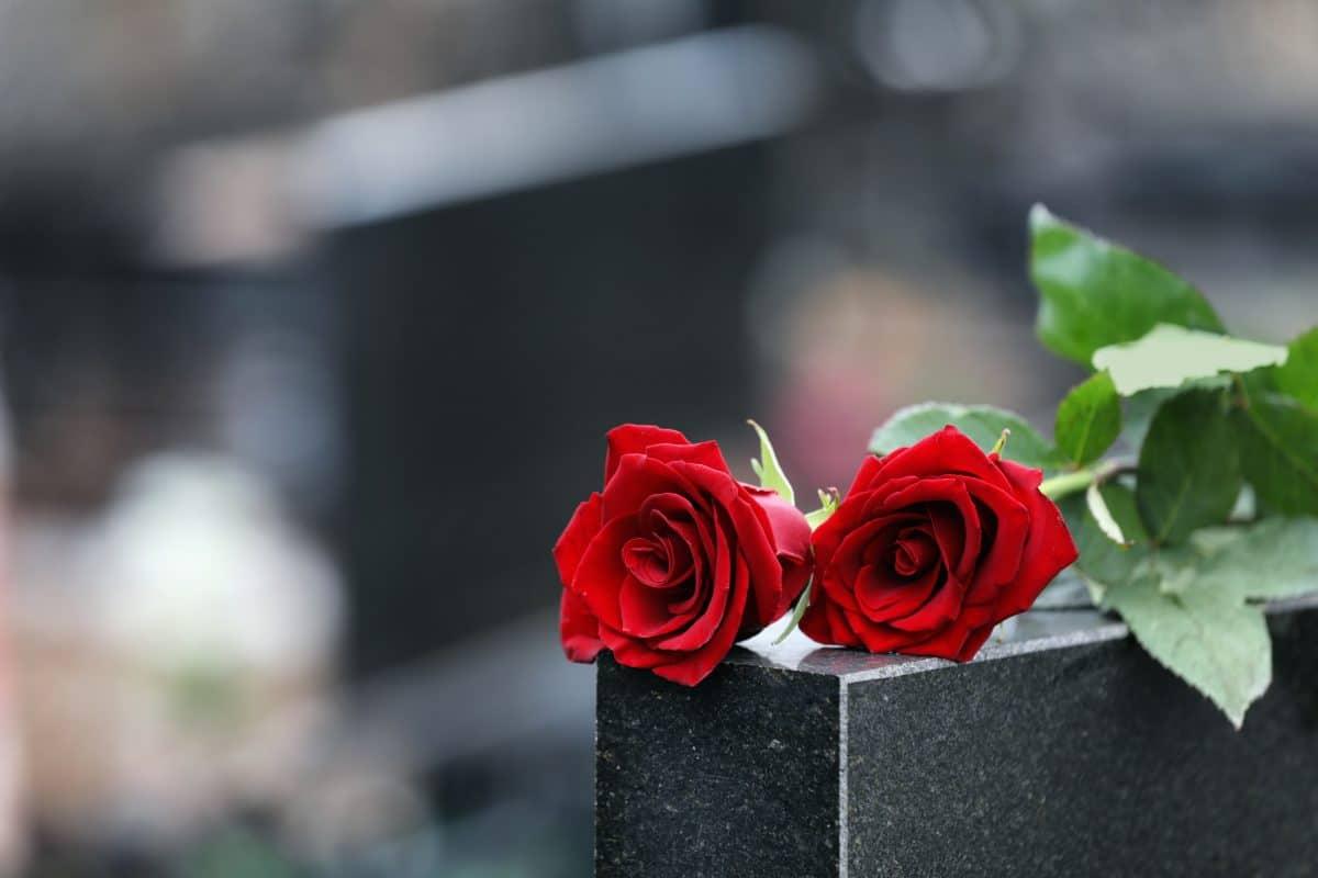 """""""The Voice Kids""""-Kandidatin Grace Mertens plant ihre eigene Beerdigung"""