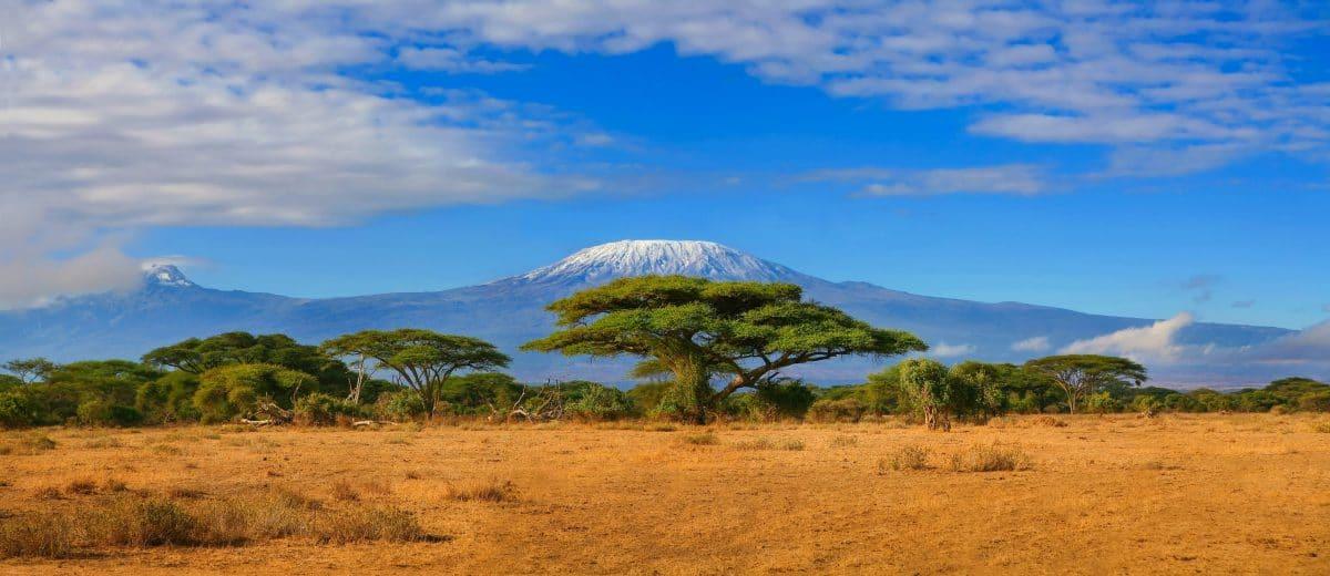 Kilimandscharo-Brand endlich eingedämmt: Jetzt sucht man nach der Ursache