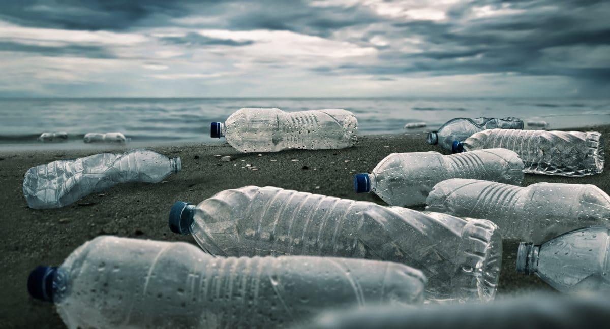 Neue Entdeckung frisst Plastik in Rekordzeit: Ist das die Lösung gegen Umweltverschmutzung?