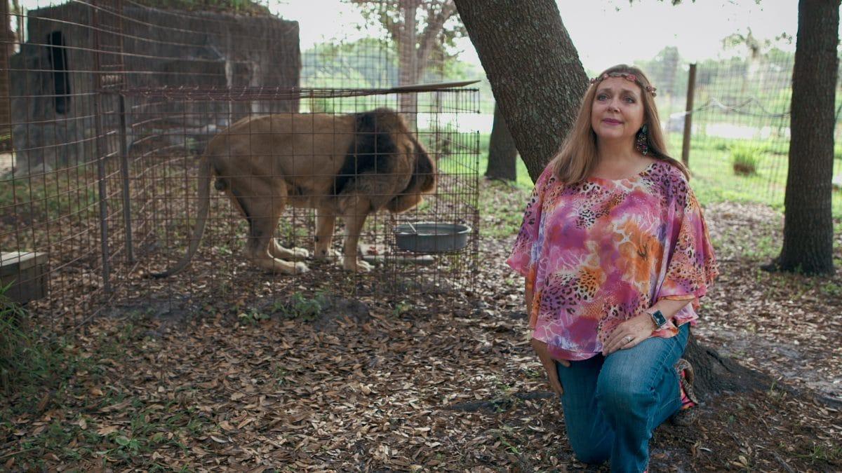 Tiger King: Carole Baskin bringt Katzen-Kryptowährung auf den Markt