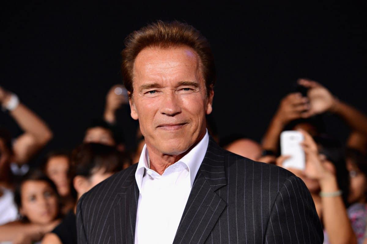 Arnold Schwarzenegger bekommt eigene Spionage-Serie auf Netflix