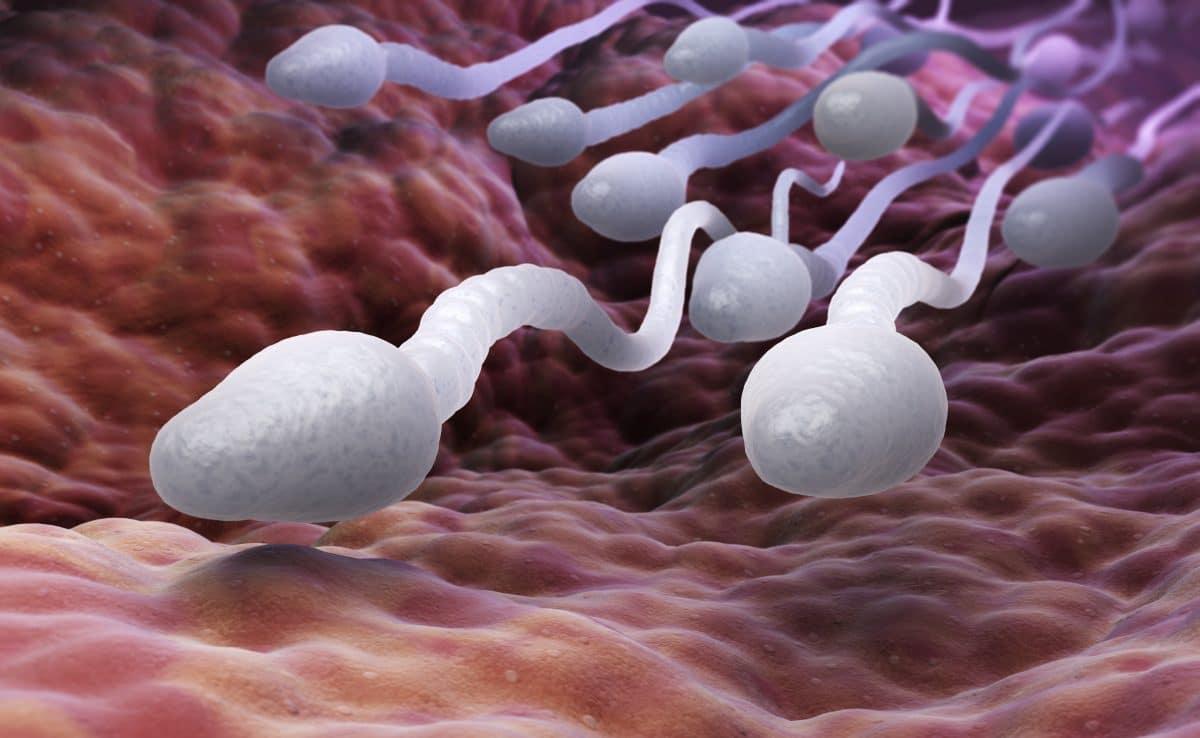 Das sind die 10 häufigsten Mythen rund ums Sperma