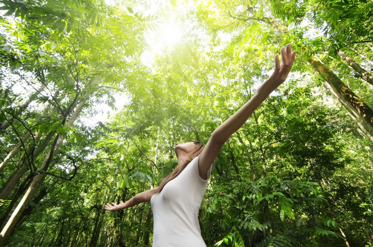 5 Gründe, warum es so gesund ist in den Wald zu gehen