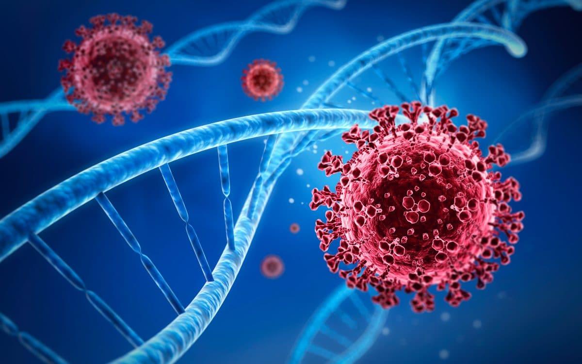 Neue Coronavirus-Art dürfte schon in Deutschland sein