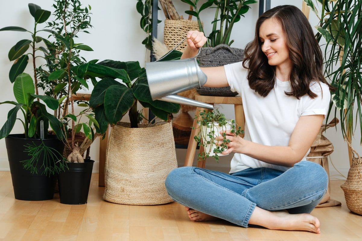 Mit diesen 5 Hausmitteln stärkst du deine Zimmerpflanzen auch im Winter