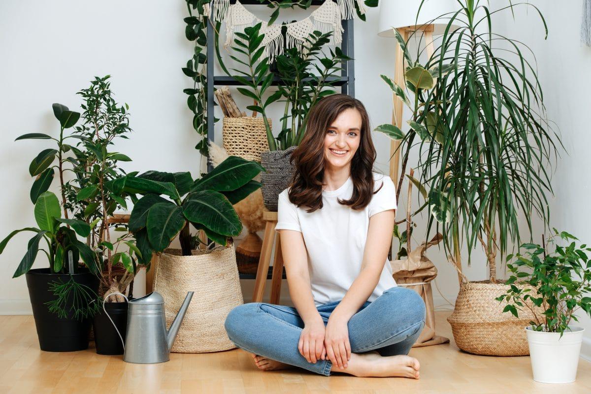 So wirken sich Zimmerpflanzen auf unsere Gesundheit aus