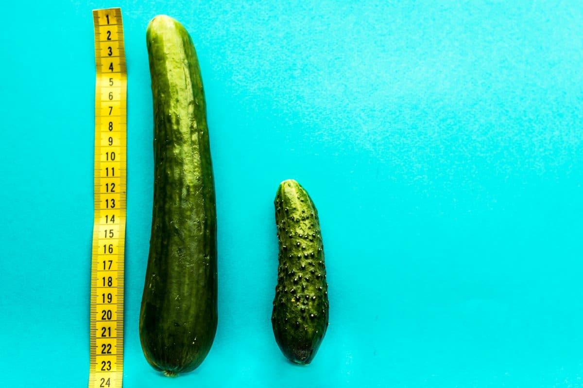 10 lustige Penis-Fakten die du garantiert noch nicht kennst