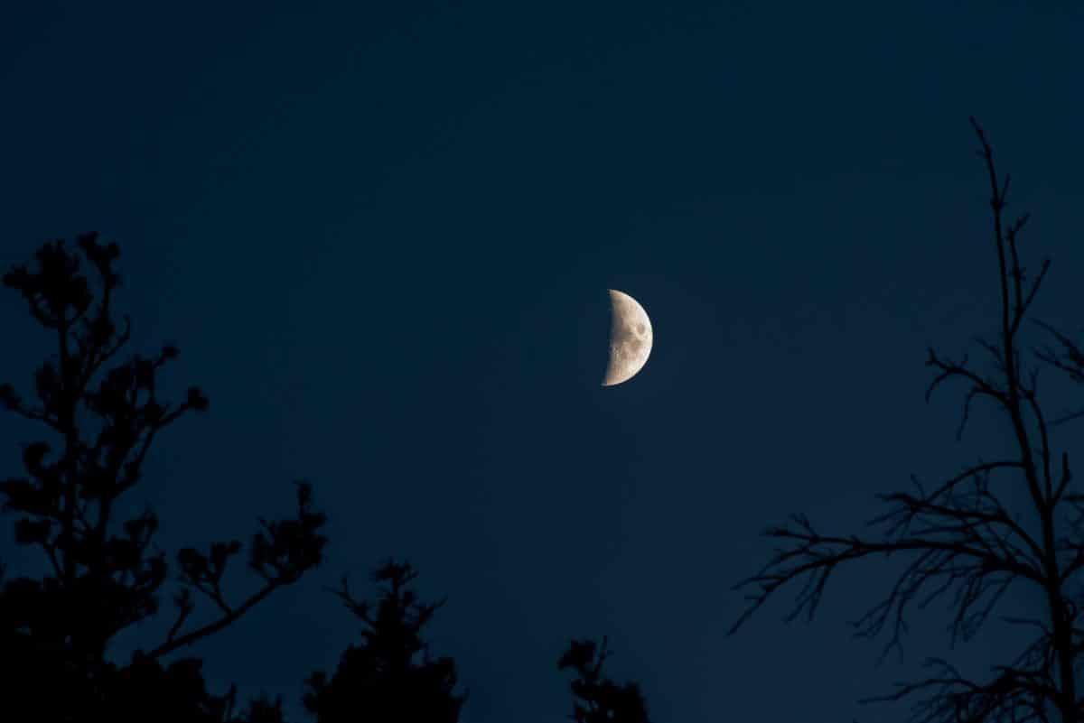 Diese 3 Sternzeichen schöpfen Energie vom zunehmenden Mond