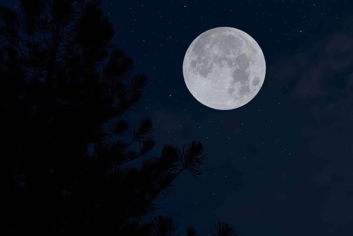 Vollmond im Februar: So beeinflusst der Snow Moon dein Sternzeichen
