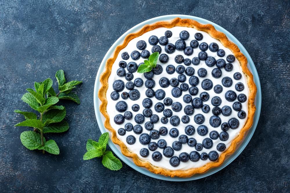 Heidelbeer-Joghurt-Torte