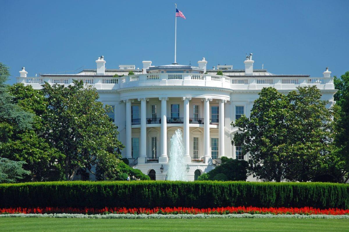 """""""First Dogs"""" nicht mehr im Weißen Haus: Sicherheitsmann gebissen"""