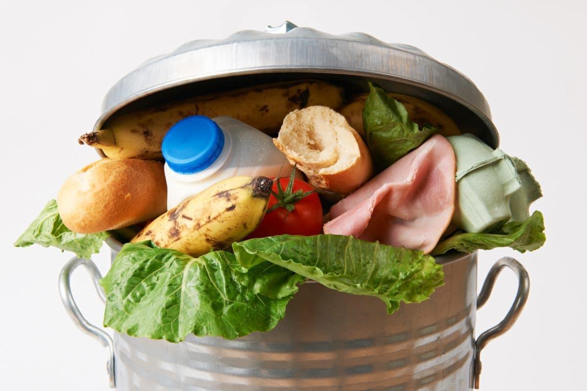 Österreicher werfen jährlich 133 Kilo Lebensmittel weg: Das muss nicht sein