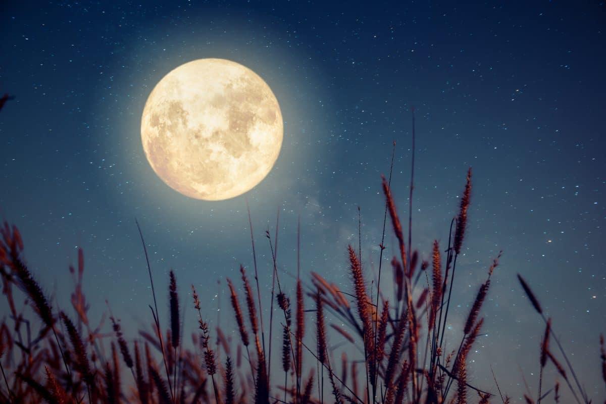 Vollmond am 28. März: Diese Kraft hat der Worm Moon