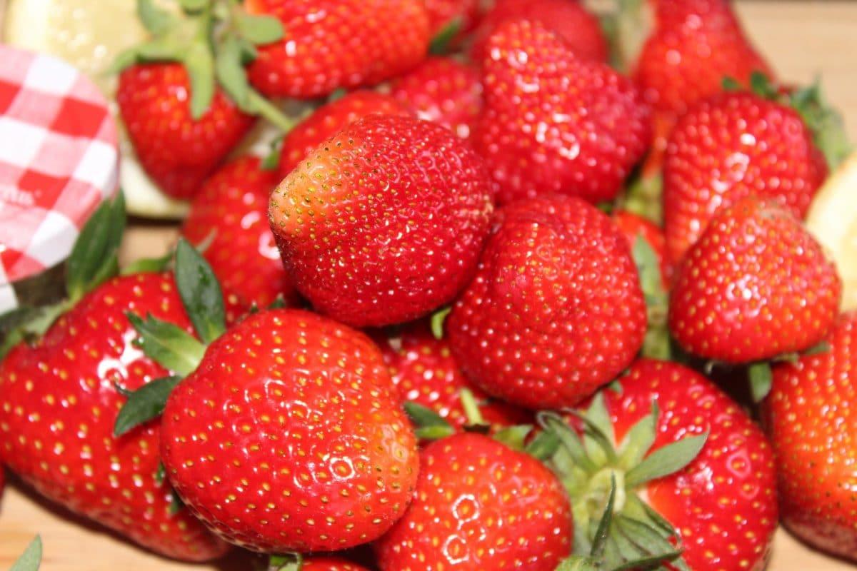 Gelee-Erdbeeren