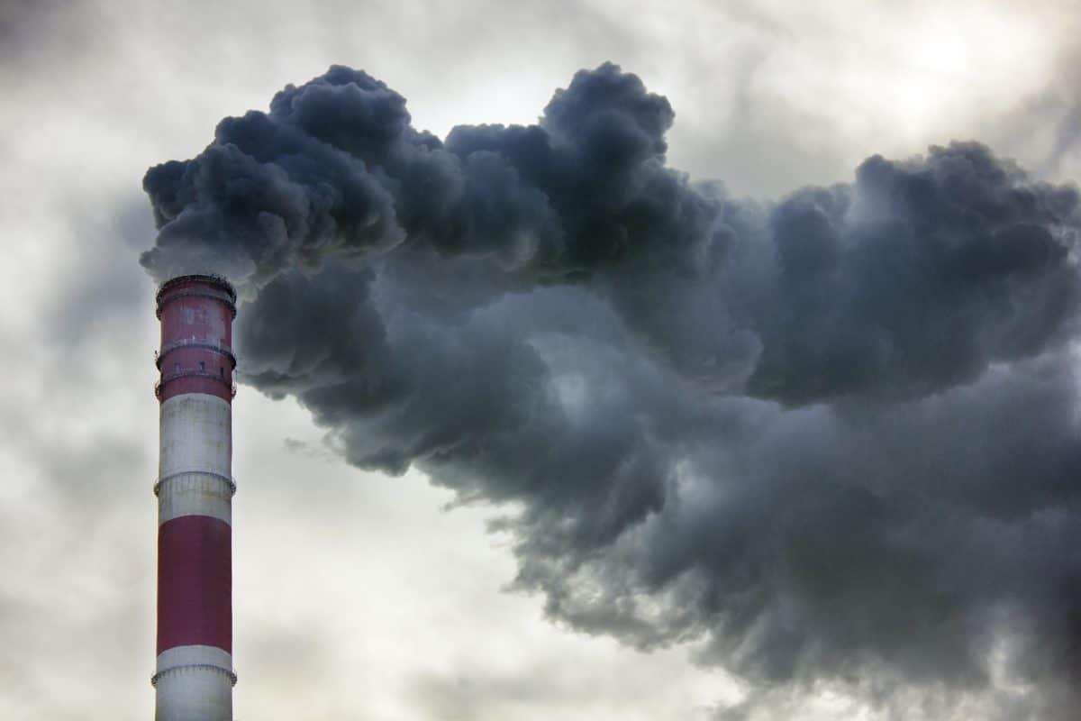 Umweltbelastung in Zahlen: So sehr beeinflusst der Mensch die Erde
