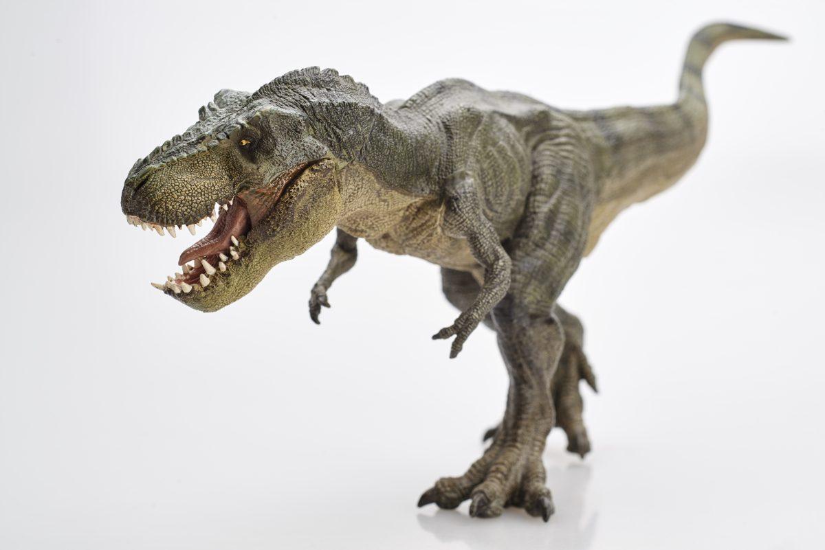 Der T-Rex war beim Gehen noch langsamer als wir Menschen
