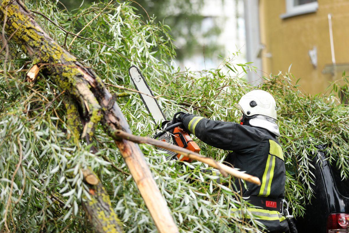 Sturmwarnung im Osten von Österreich: Feuerwehr rät Parks zu meiden