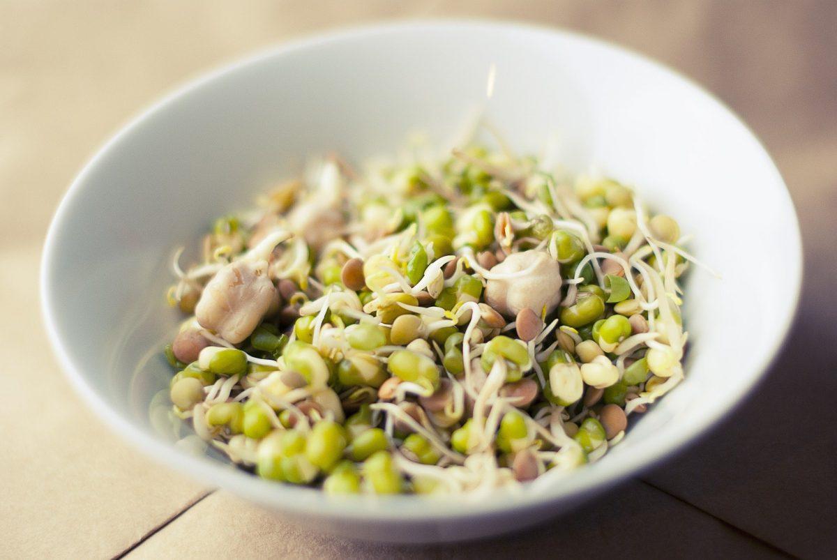 Sojabohnensprossen – Namul