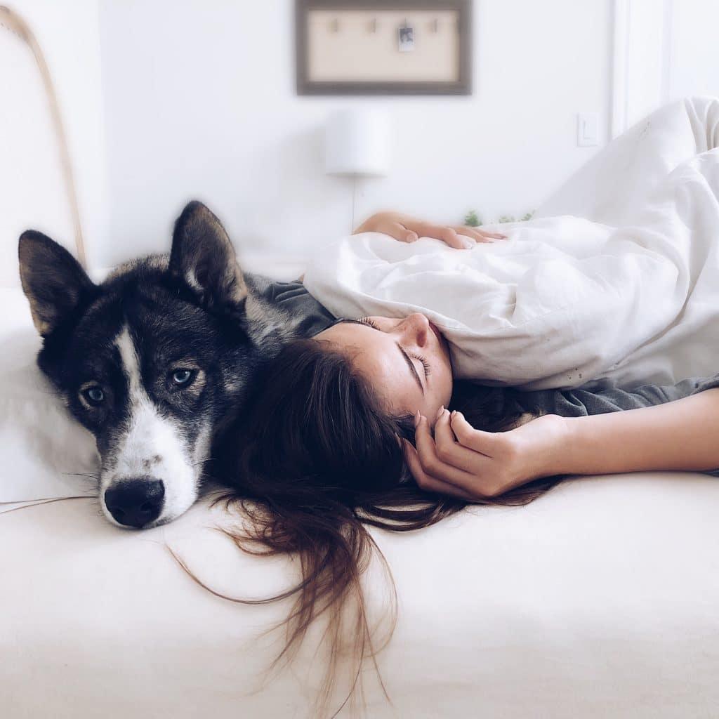 Betrunkene Frau wacht mit fremdem Hund im Bett auf