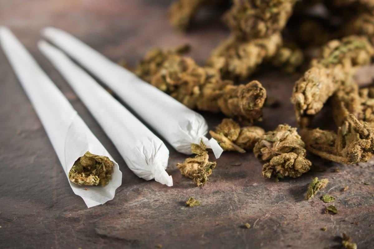 Cannabis-Jahresvorrat gewinnen: So belohnt Kanada Corona-Impfung