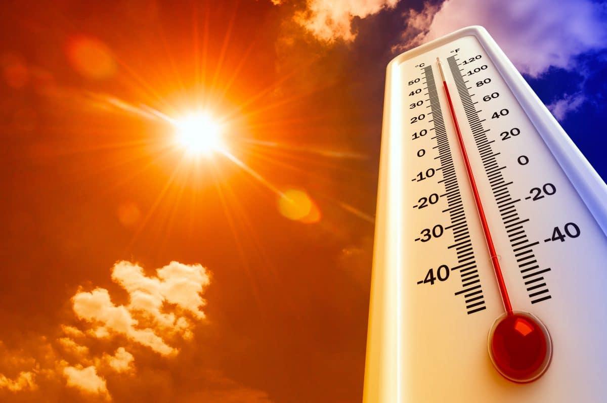 Kanada: 49,5 Grad sorgen für zahlreiche Hitzetote