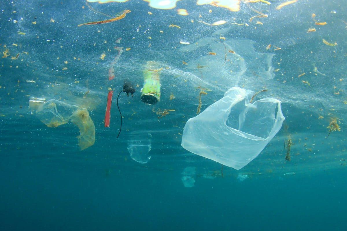 Diese Projekte sollen unsere Ozeane von Plastikmüll befreien
