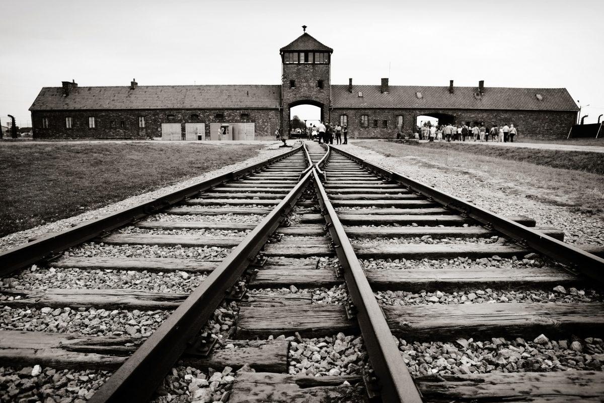 Lily Ebert: Die Auschwitz-Überlebende teilt ihre Geschichte mit 1 Million TikTok-Followern