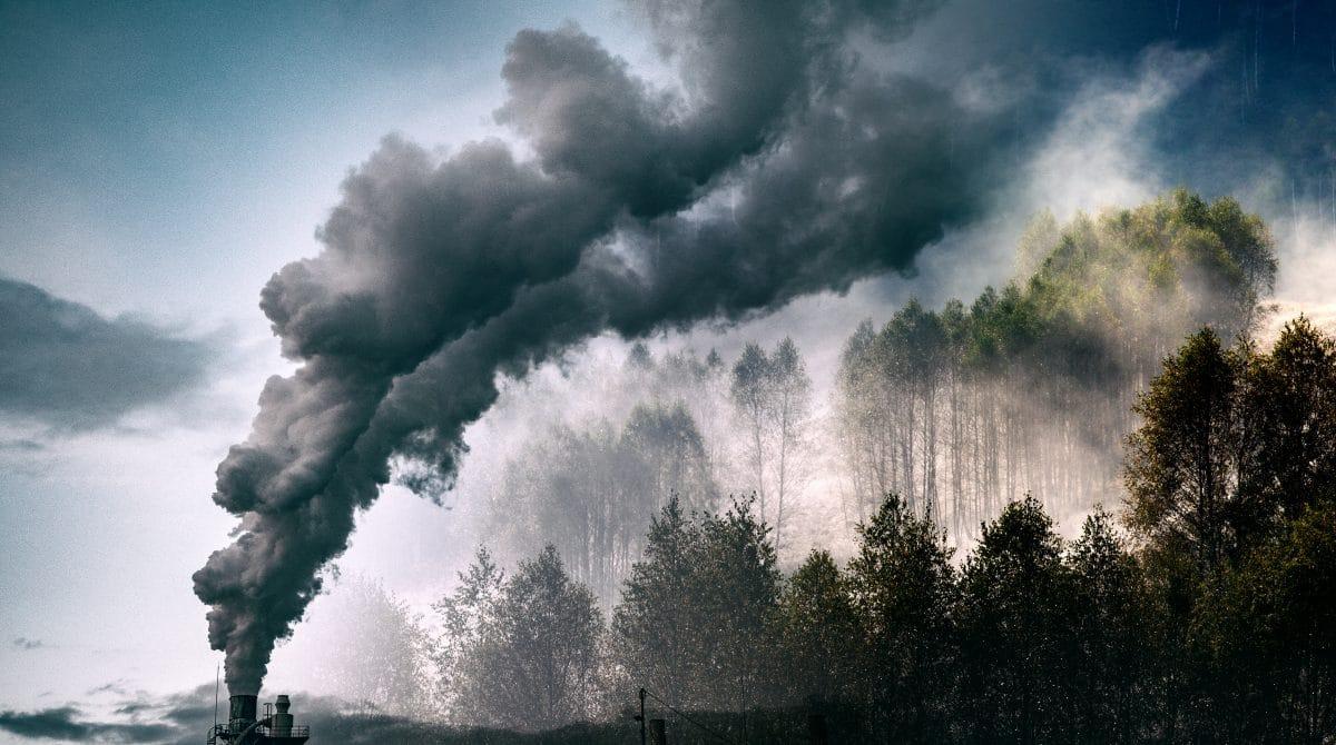 Earth Overshoot Day 2021: Ab heute verbrauchen wir mehr natürliche Ressourcen als verfügbar