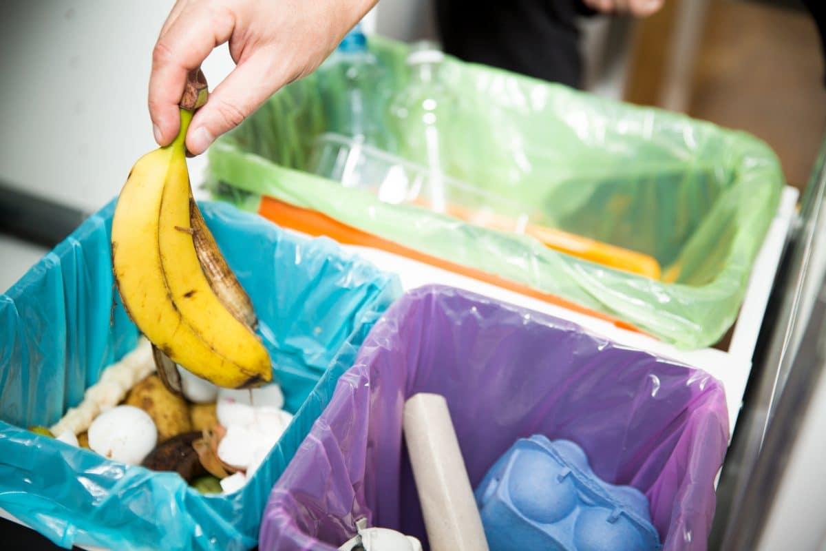 Wenn der Müll im Sommer stinkt: Das kannst du dagegen tun