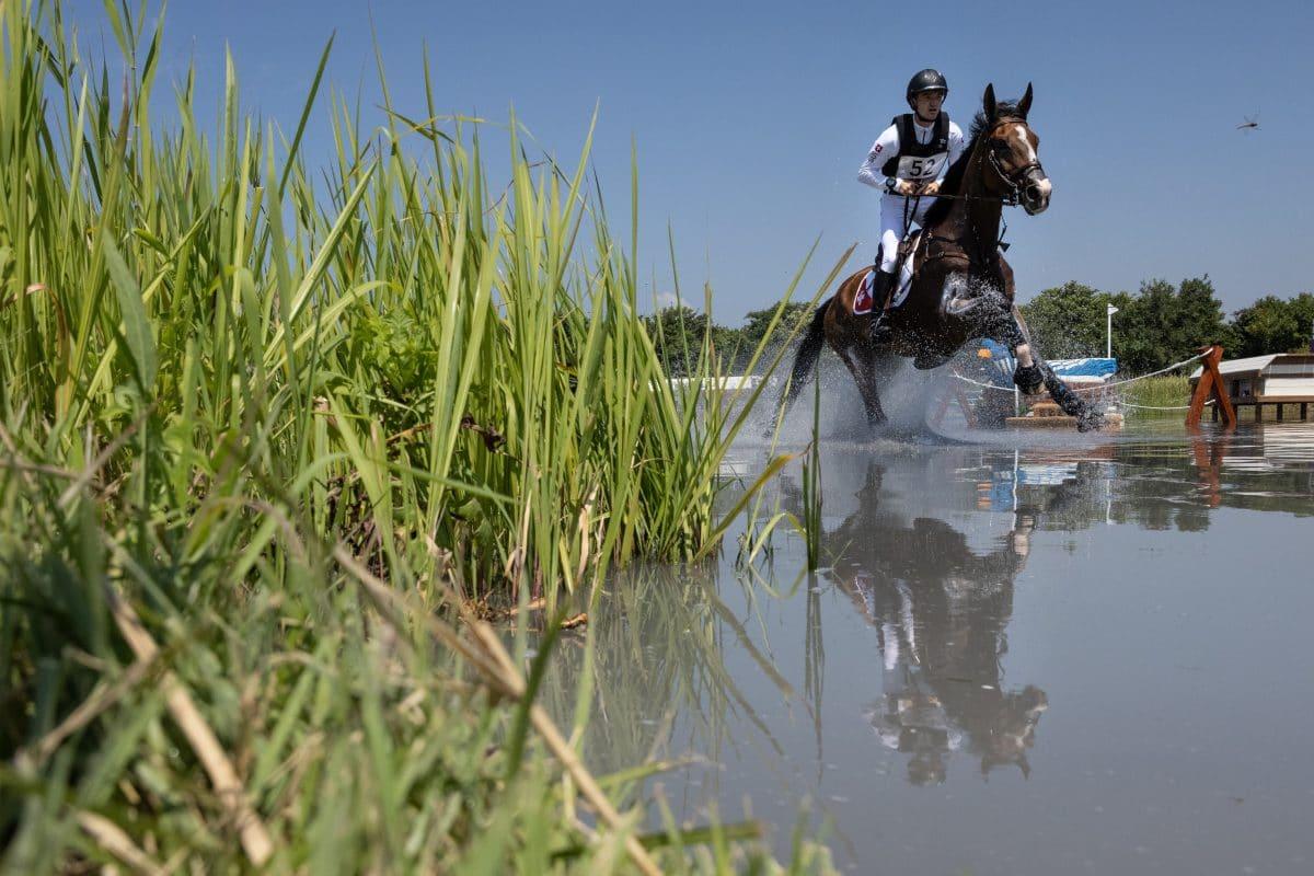 Olympia-Drama: Pferd nach Unfall wegen Bänderriss eingeschläfert