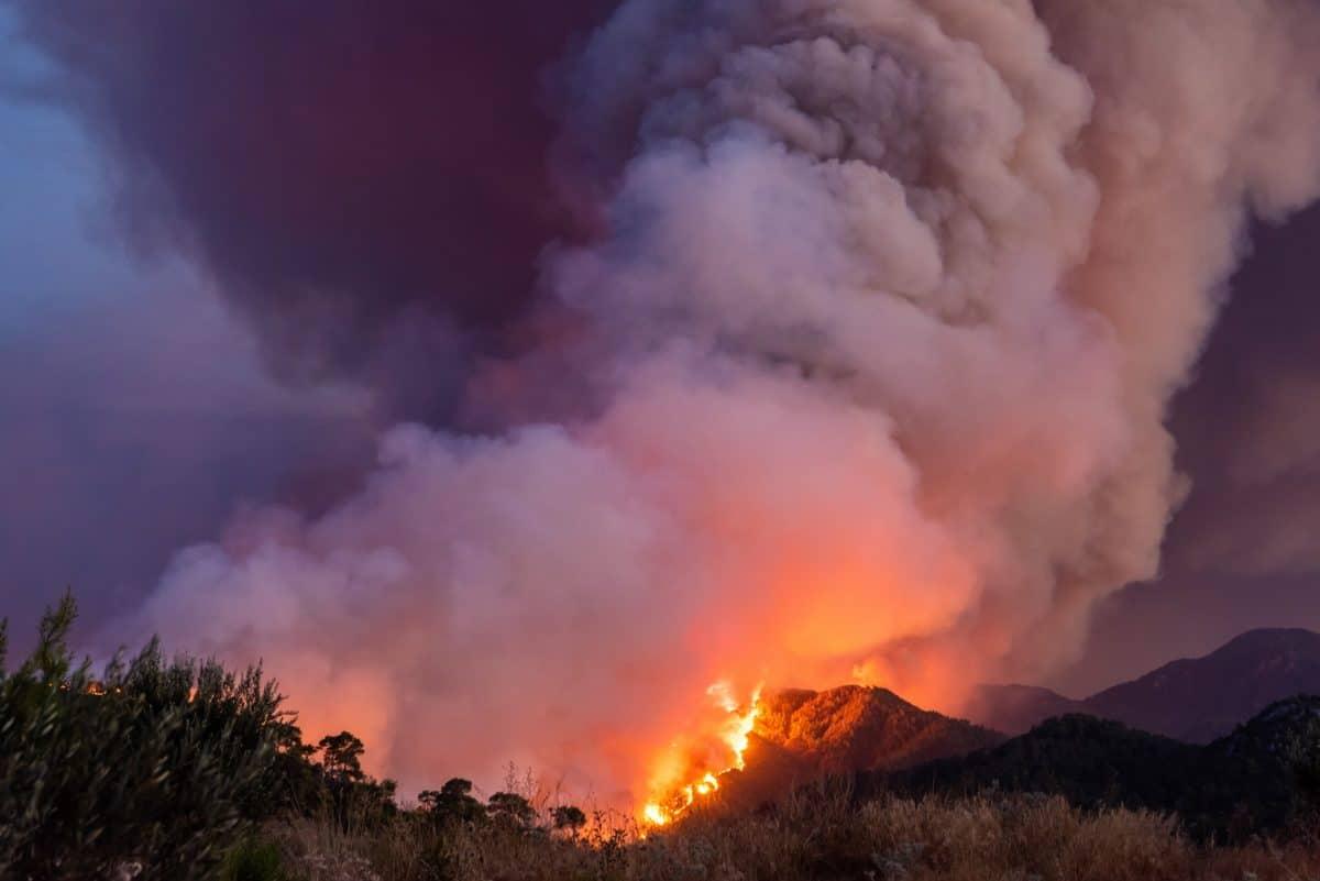 Hitzewelle: Starke Brände in der Türkei & Italien, bedrohliche Hitze in Griechenland