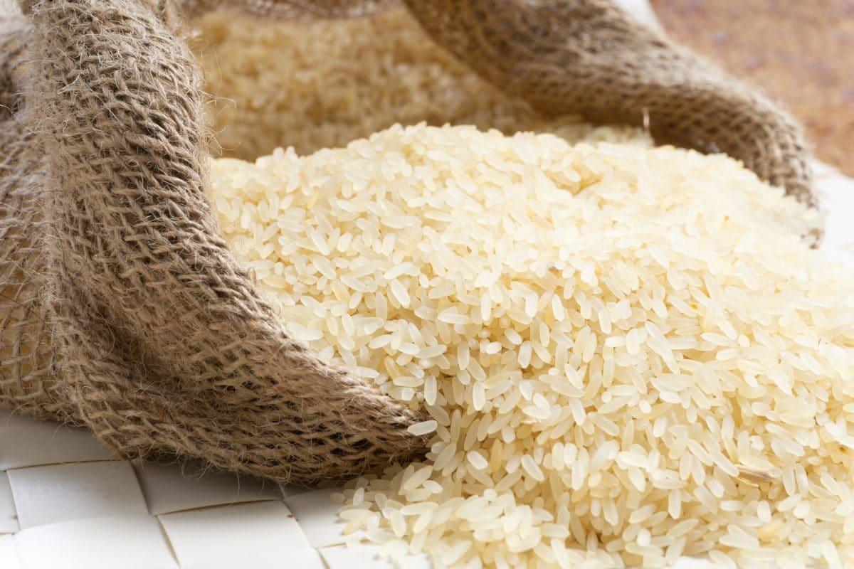 Nachwuchs während Corona: Japanische Familien verschicken Reissack-Babys