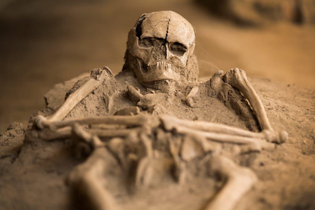 Mann entdeckt 45 Skelette bei Hausbau im Burgenland